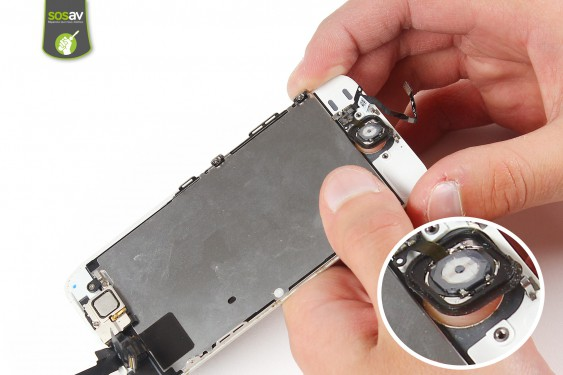 Step 10 - image 3 - Home button repair